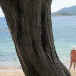 La Chiappa-plage naturiste