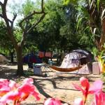 Camping Ile d'Or-Bord de Mer