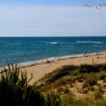 Camping Les Grocs Joncs-Bord de Mer