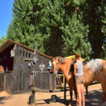 Camping Village Resort & SPA Le Vieux Port-Equitation